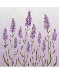 Lavender Field Luncheon Napkins