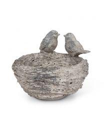 Double Bird on Nest