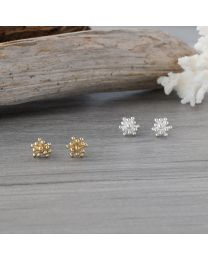 Living Coral Studs - Silver