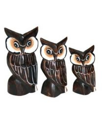 OWL - BROWN S/3