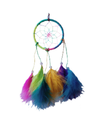 DREAM CATCHER 10IN MIXED COLOR