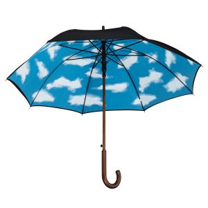 Umbrella with Cloud Lining